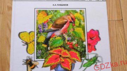 МИР ВОКРУГ НАС Решение упражнений к учебнику А. А. Плешакова 1 класс